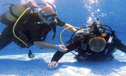 Pool Based Diving Lessons