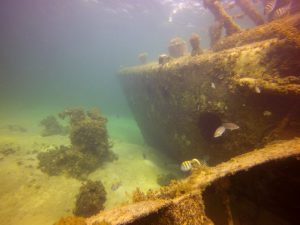 local-dive-sites-03
